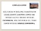 ZSP-3